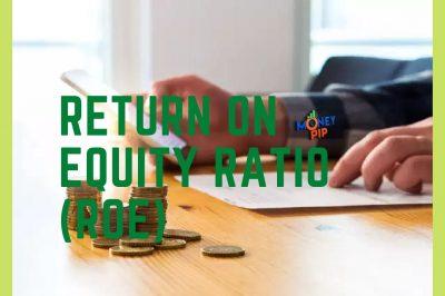 Return on Equity Ratio (ROE)