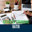 Basics Of Financial Ratio