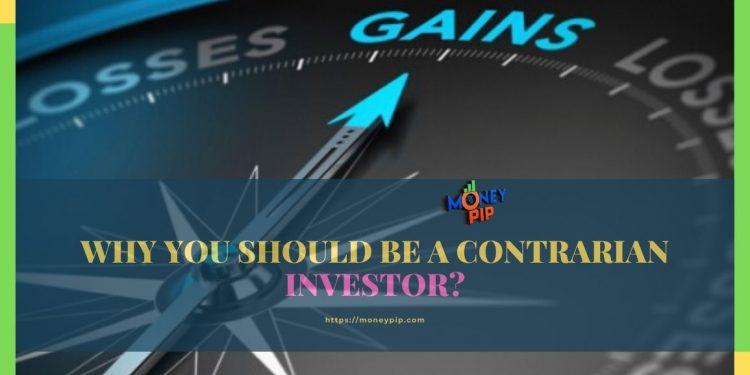 contrarian investor