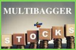 multibagger Stock