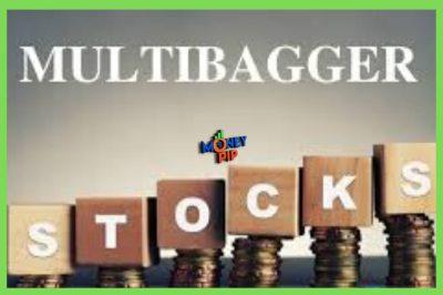 multibagger Stock
